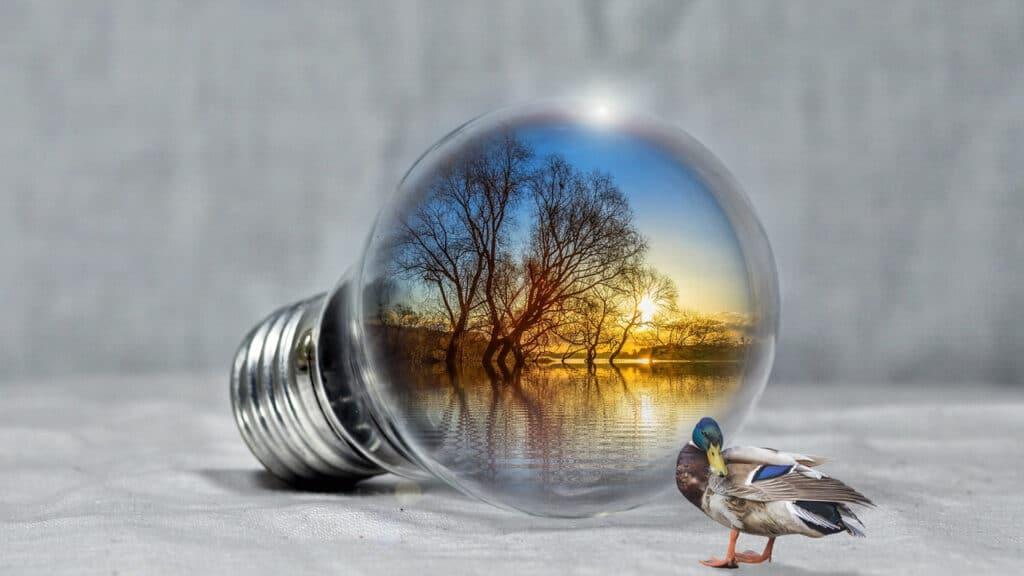 Comment choisir son fournisseur d'électricité pro ?
